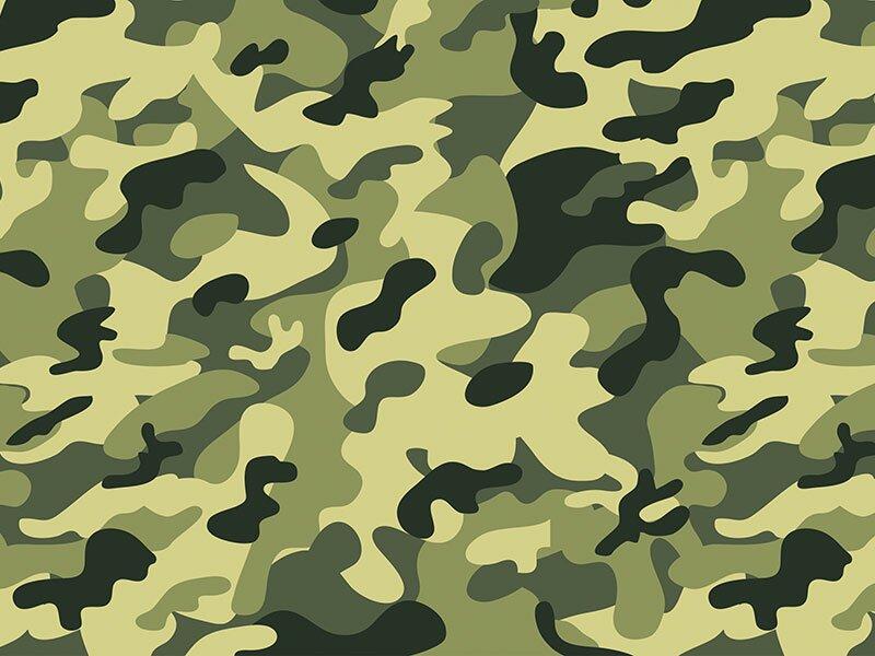 Армия в векторе